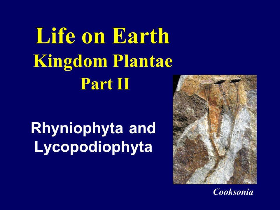 Life on Earth Kingdom Plantae Part II Rhyniophyta and Lycopodiophyta Cooksonia