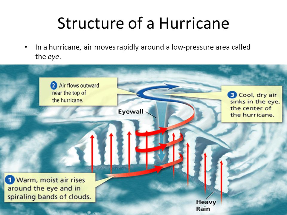 Structure of a Hurricane In a hurricane, air moves rapidly around a low-pressure area called the eye.
