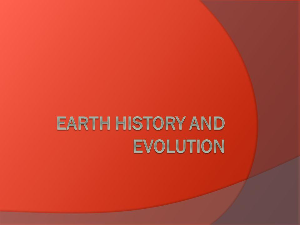 Key Ideas and Vocabulary  How do fossils form.How do fossils form.
