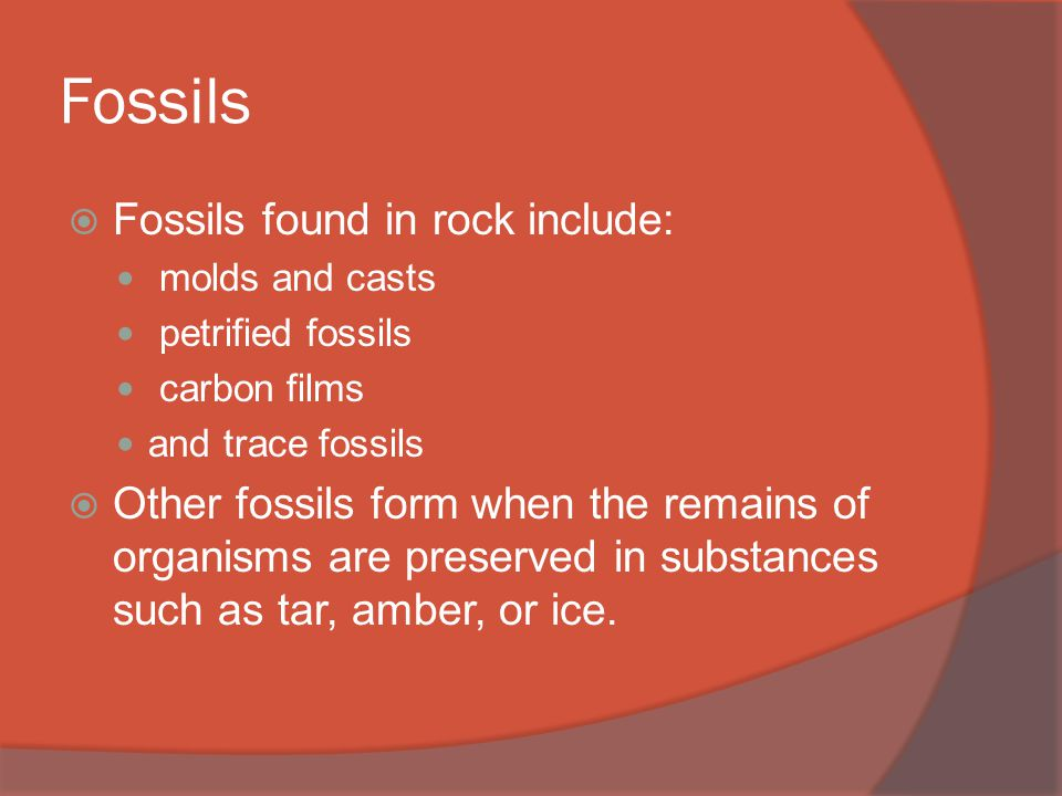 Fossils  Fossils found in rock include: molds and casts petrified fossils carbon films and trace fossils  Other fossils form when the remains of organisms are preserved in substances such as tar, amber, or ice.