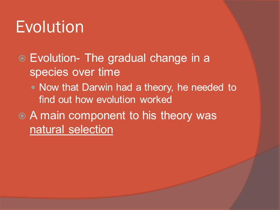 Evolution  Evolution- The gradual change in a species over time Now that Darwin had a theory, he needed to find out how evolution worked  A main component to his theory was natural selection