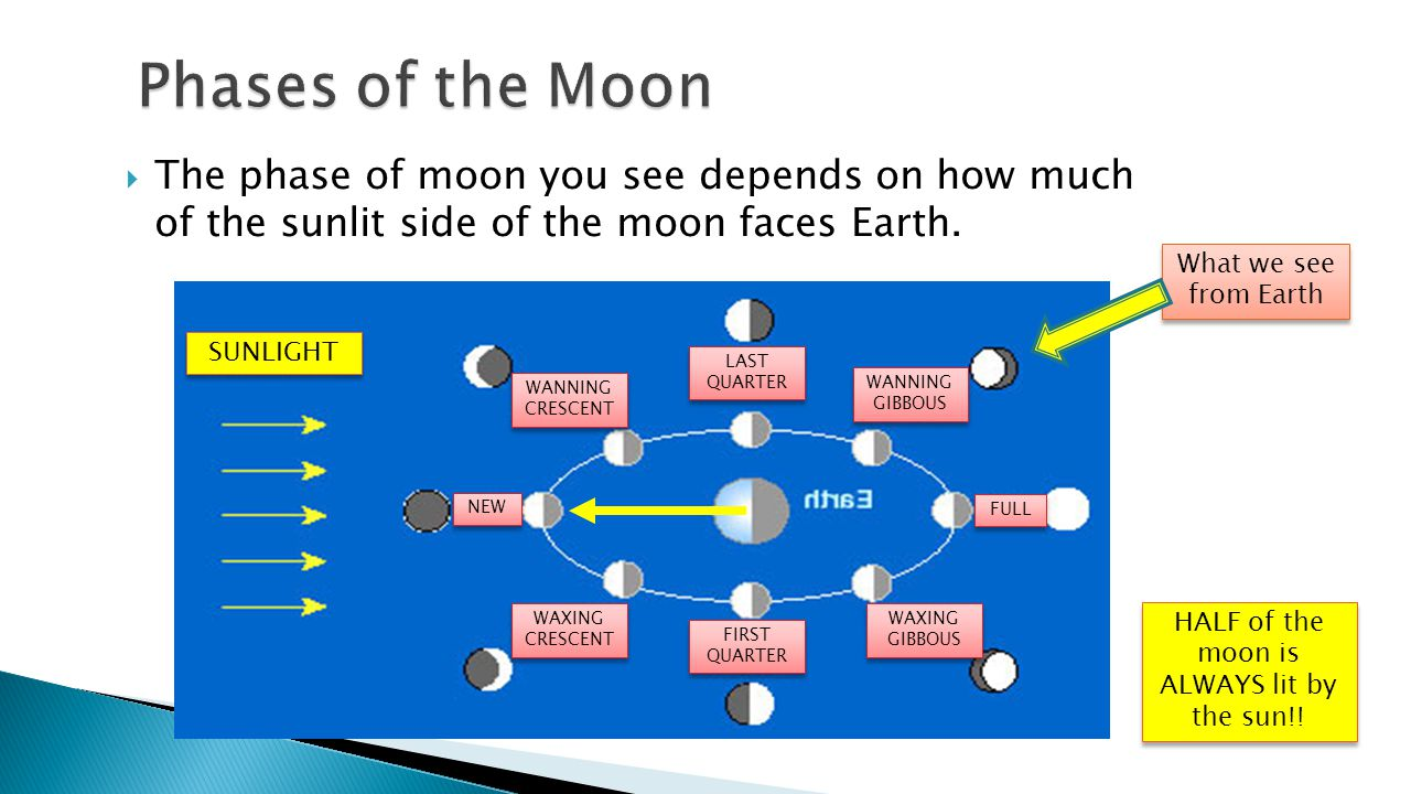 - Phases, Eclipses, and Tides  The phase of moon you see depends on how much of the sunlit side of the moon faces Earth. SUNLIGHT NEW WAXING CRESCENT