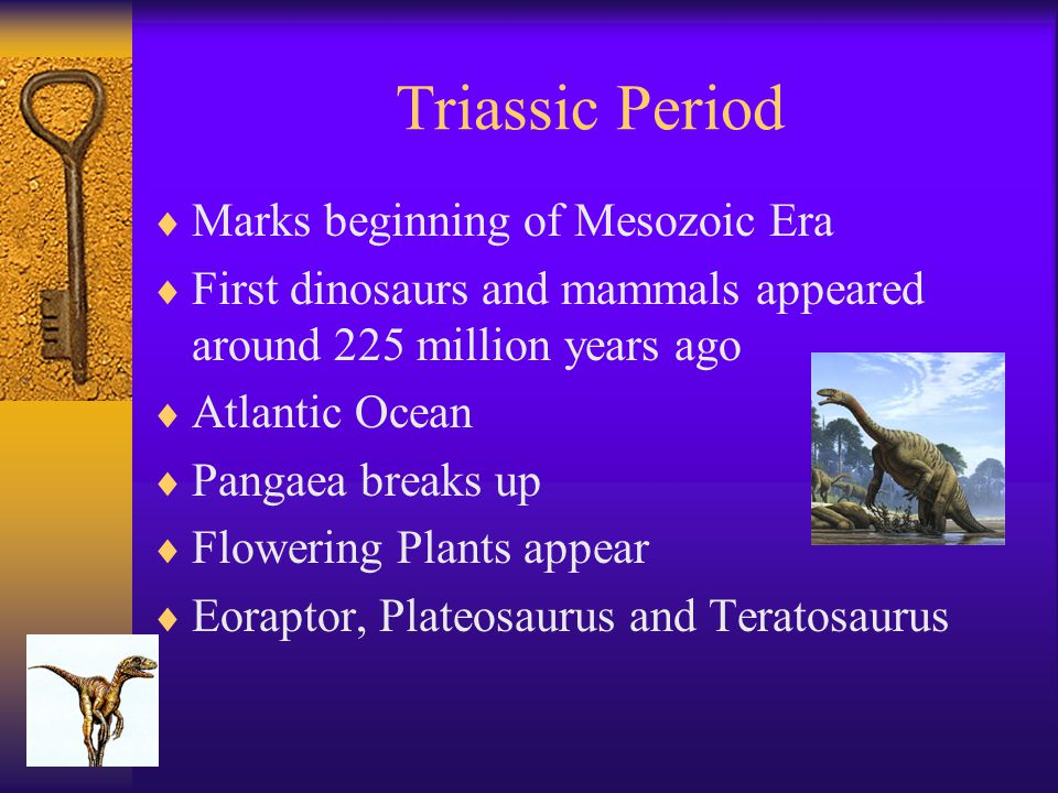 Triassic Period  Marks beginning of Mesozoic Era  First dinosaurs and mammals appeared around 225 million years ago  Atlantic Ocean  Pangaea break
