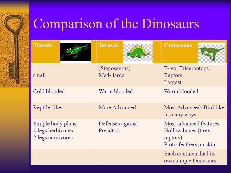 Comparison of the Dinosaurs TriassicJurassicCretaceous small (Stegosaurus) Med- large T-rex, Triceraptops, Raptors Largest Cold bloodedWarm blooded Re