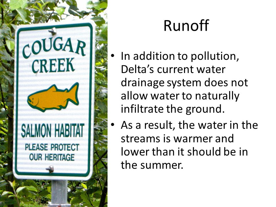 Runoff In addition to pollution, Delta's current water drainage system does not allow water to naturally infiltrate the ground.