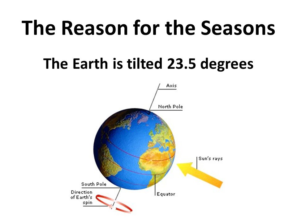 The Reason for the Seasons The Earth is tilted 23.5 degrees
