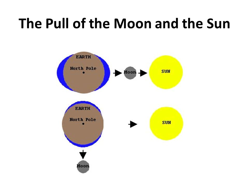 The Pull of the Moon and the Sun
