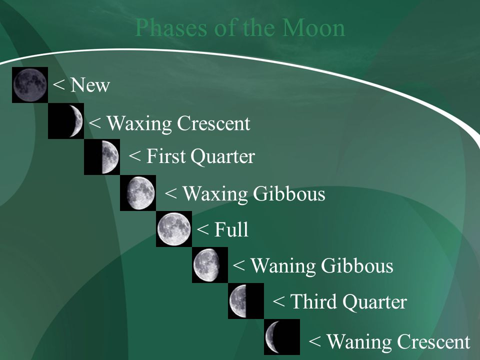 Phases of the Moon < New < Waxing Crescent < First Quarter < Waxing Gibbous < Full < Waning Gibbous < Third Quarter < Waning Crescent