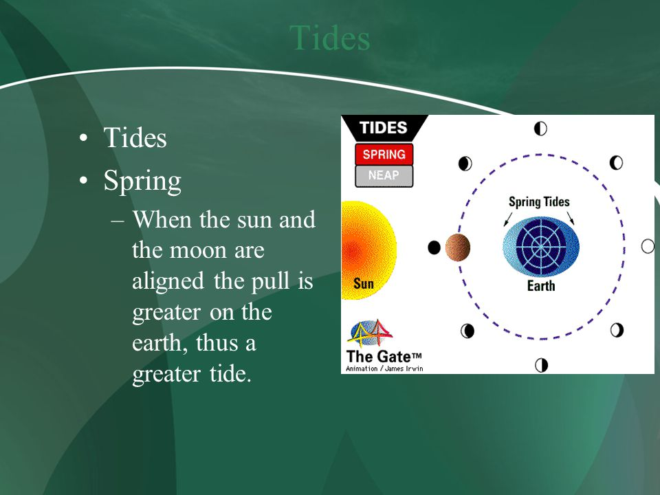 Tides Spring –When the sun and the moon are aligned the pull is greater on the earth, thus a greater tide.
