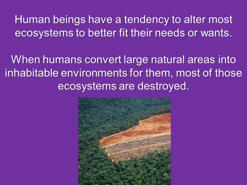 Human beings have a tendency to alter most ecosystems to better fit their needs or wants. When humans convert large natural areas into inhabitable env