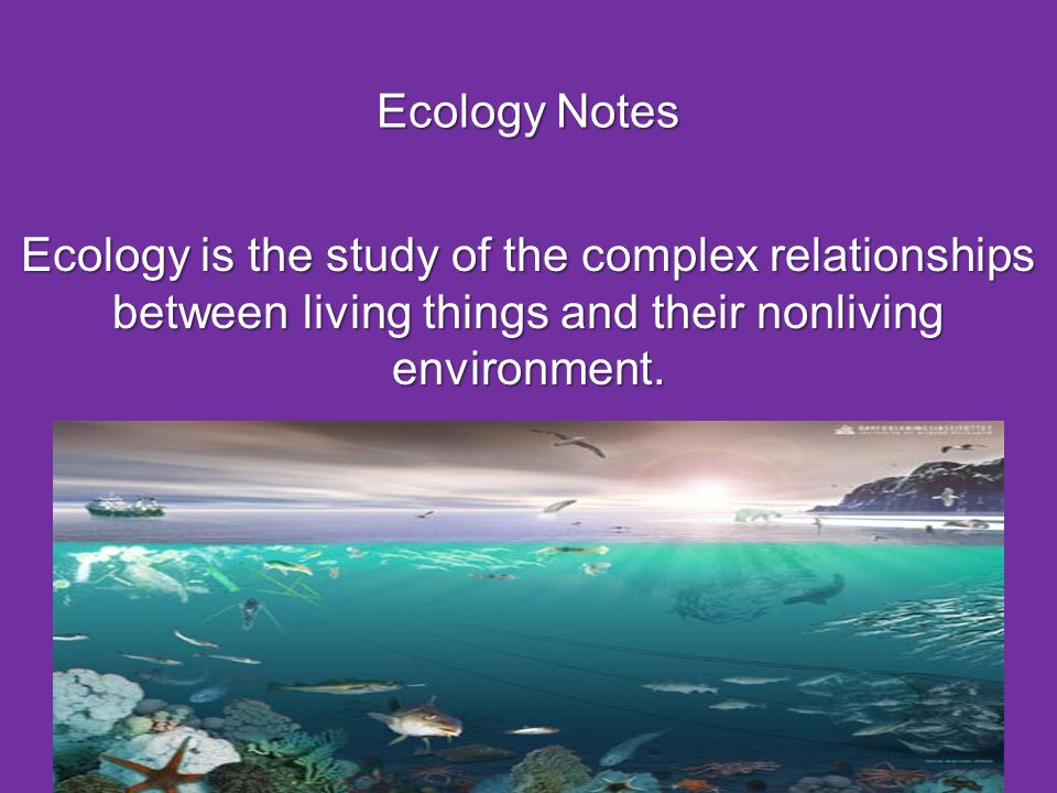 A community of organisms and the abiotic environment that the organisms inhabit is called an ecosystem.