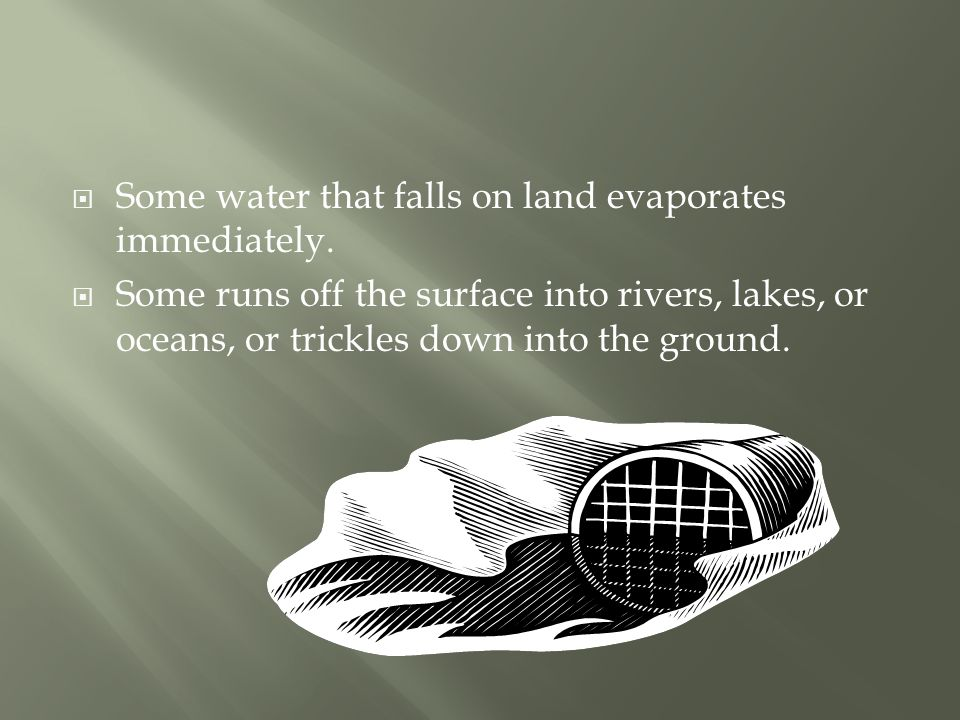  Some water that falls on land evaporates immediately.