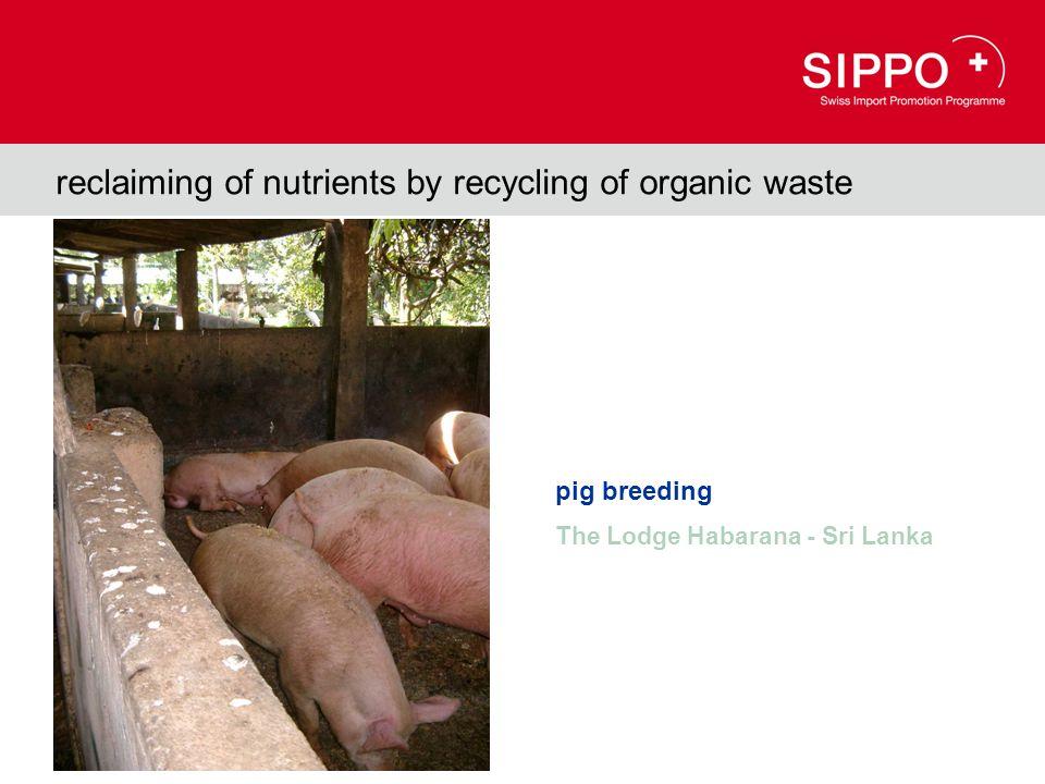 reclaiming of nutrients by recycling of organic waste pig breeding The Lodge Habarana - Sri Lanka