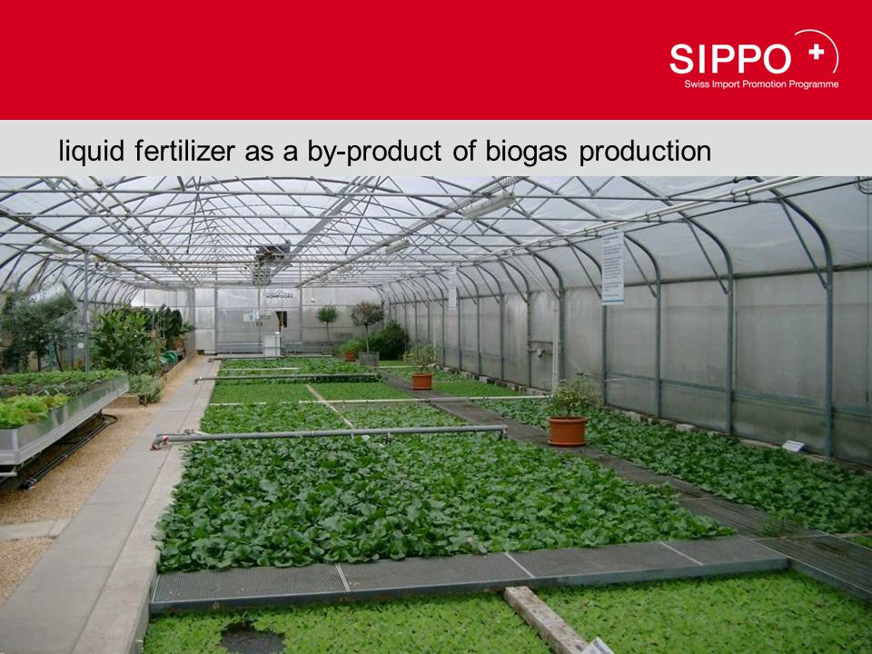 liquid fertilizer as a by-product of biogas production