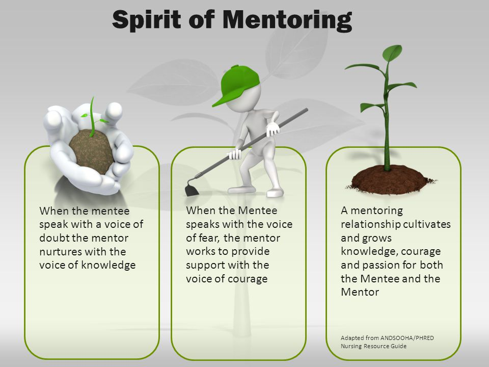 When the mentee speak with a voice of doubt the mentor nurtures with the voice of knowledge When the Mentee speaks with the voice of fear, the mentor works to provide support with the voice of courage A mentoring relationship cultivates and grows knowledge, courage and passion for both the Mentee and the Mentor Adapted from ANDSOOHA/PHRED Nursing Resource Guide Spirit of Mentoring