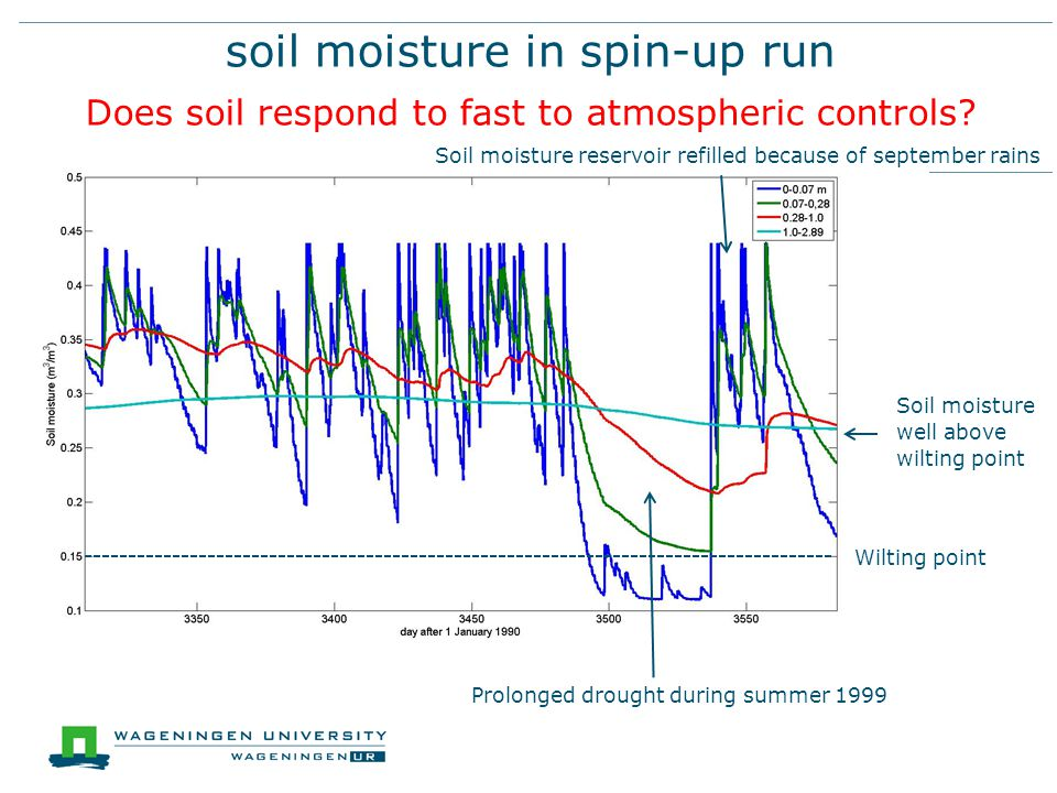 soil moisture in spin-up run Does soil respond to fast to atmospheric controls? Soil moisture well above wilting point Prolonged drought during summer