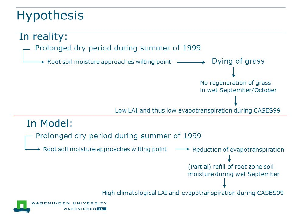 Hypothesis Prolonged dry period during summer of 1999 Dying of grass Root soil moisture approaches wilting point In reality: No regeneration of grass in wet September/October Low LAI and thus low evapotranspiration during CASES99 In Model: Prolonged dry period during summer of 1999 Root soil moisture approaches wilting point Reduction of evapotranspiration (Partial) refill of root zone soil moisture during wet September High climatological LAI and evapotranspiration during CASES99