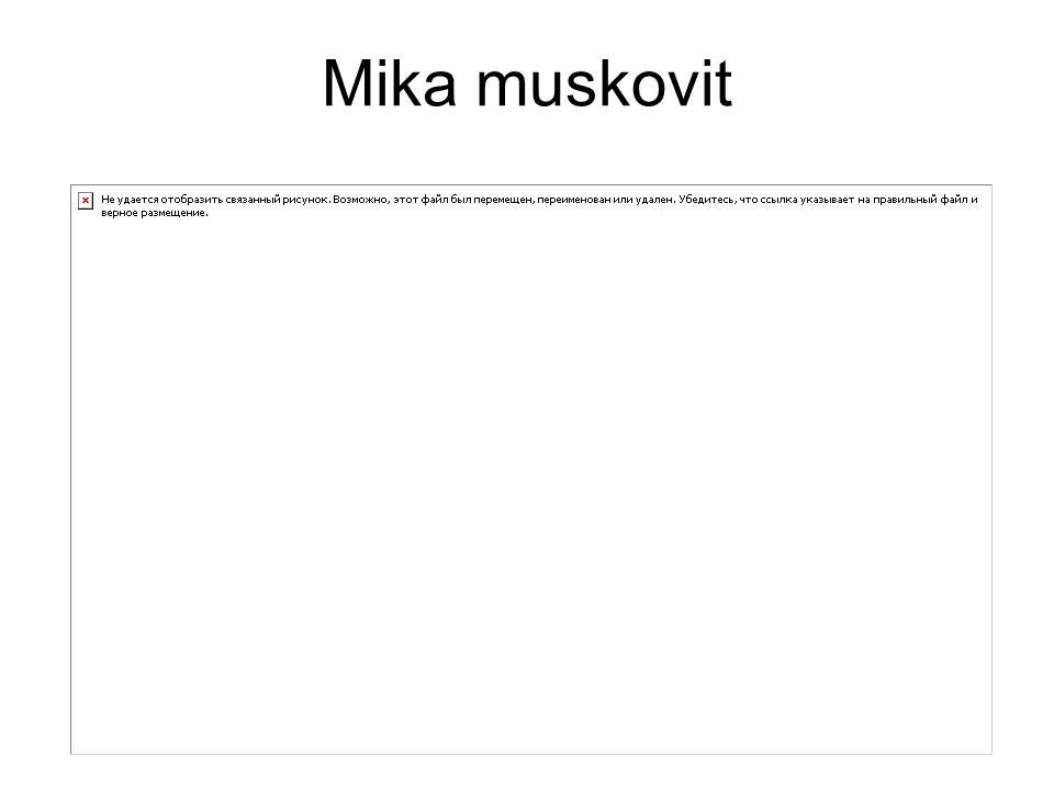 Mika muskovit