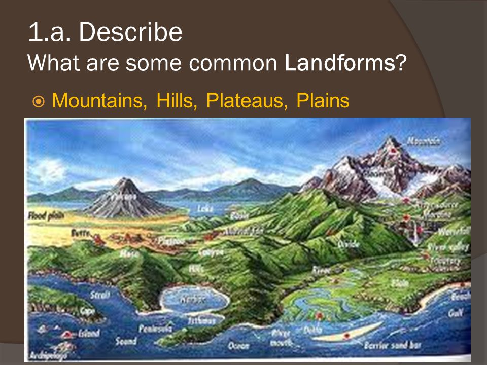 1.a. Describe What are some common Landforms?  Mountains, Hills, Plateaus, Plains