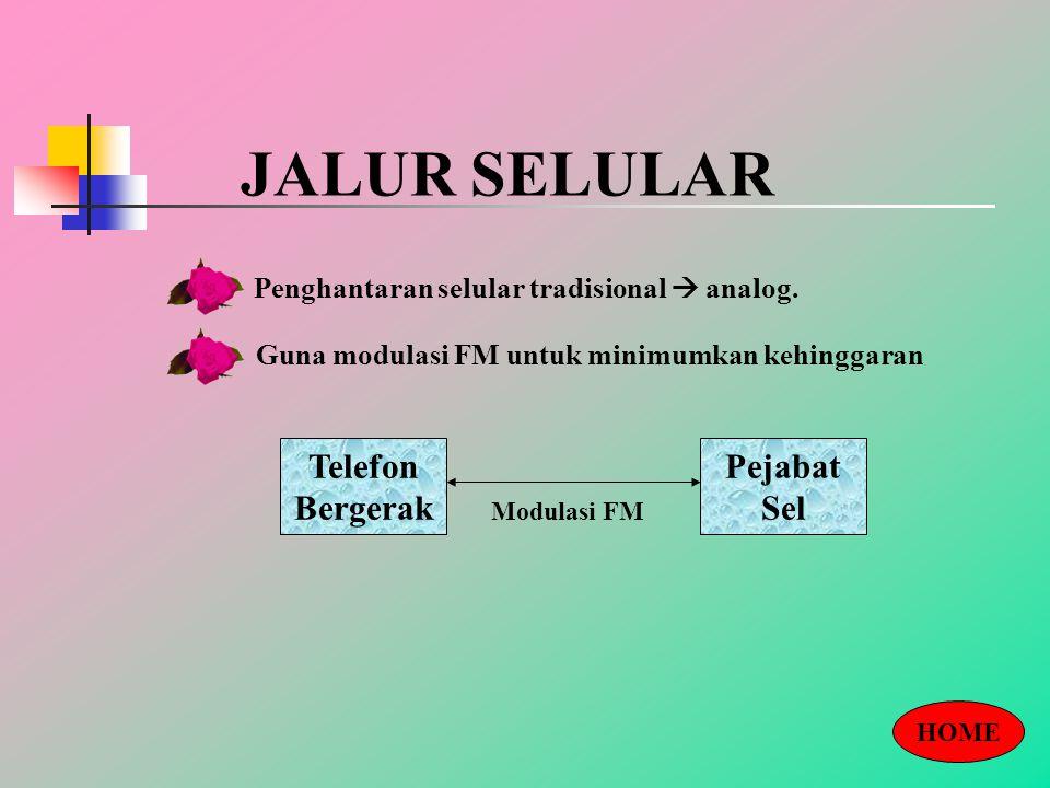 JALUR SELULAR Penghantaran selular tradisional  analog.