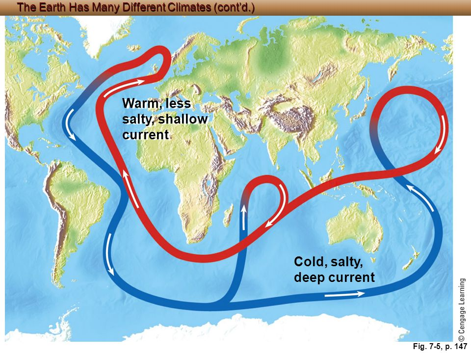 © Cengage Learning 2015 Fig. 7-5, p. 147 Warm, less salty, shallow current Cold, salty, deep current The Earth Has Many Different Climates (cont'd.)