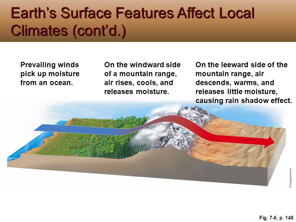 Earth's Surface Features Affect Local Climates (cont'd.) Fig. 7-6, p. 148 Prevailing winds pick up moisture from an ocean. On the windward side of a m