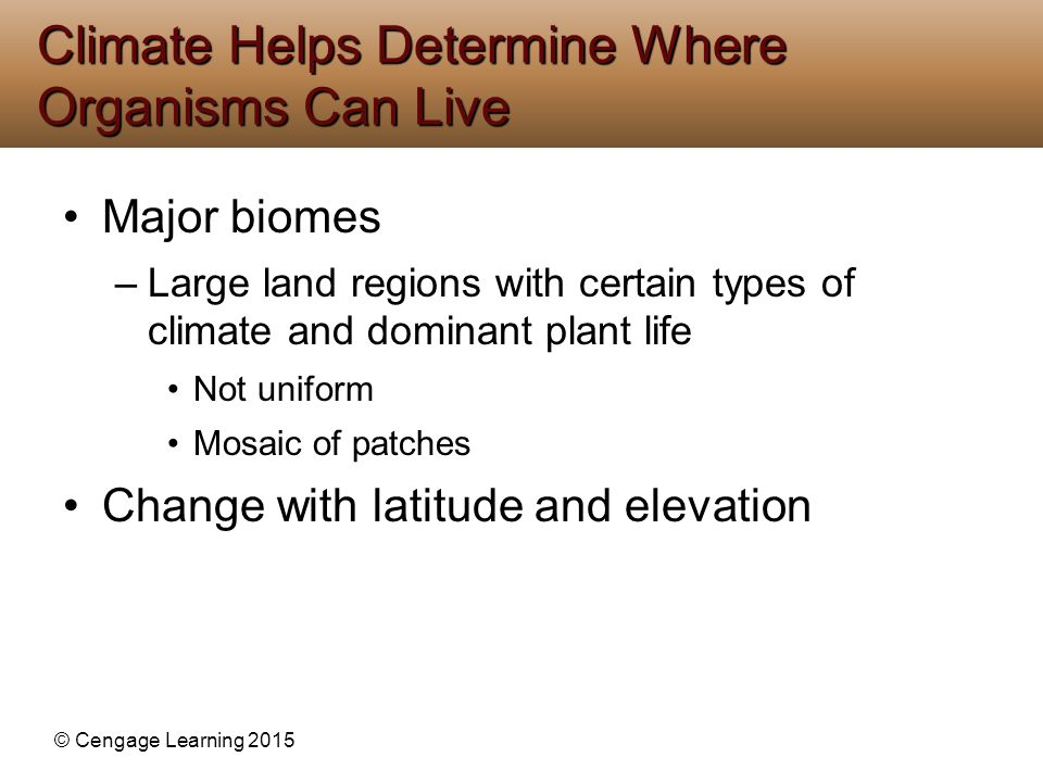 © Cengage Learning 2015 Major biomes –Large land regions with certain types of climate and dominant plant life Not uniform Mosaic of patches Change wi