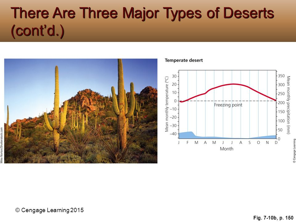 © Cengage Learning 2015 Fig. 7-10b, p. 150 There Are Three Major Types of Deserts (cont'd.)