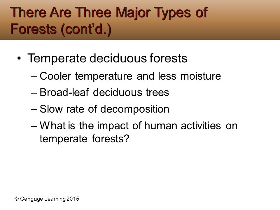 © Cengage Learning 2015 Temperate deciduous forests –Cooler temperature and less moisture –Broad-leaf deciduous trees –Slow rate of decomposition –Wha