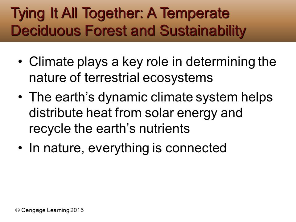 © Cengage Learning 2015 Climate plays a key role in determining the nature of terrestrial ecosystems The earth's dynamic climate system helps distribu