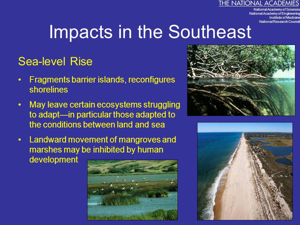 Impacts in the Southeast Sea-level Rise Fragments barrier islands, reconfigures shorelines May leave certain ecosystems struggling to adapt—in particu