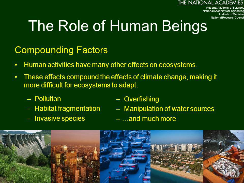 The Role of Human Beings Compounding Factors Human activities have many other effects on ecosystems. These effects compound the effects of climate cha