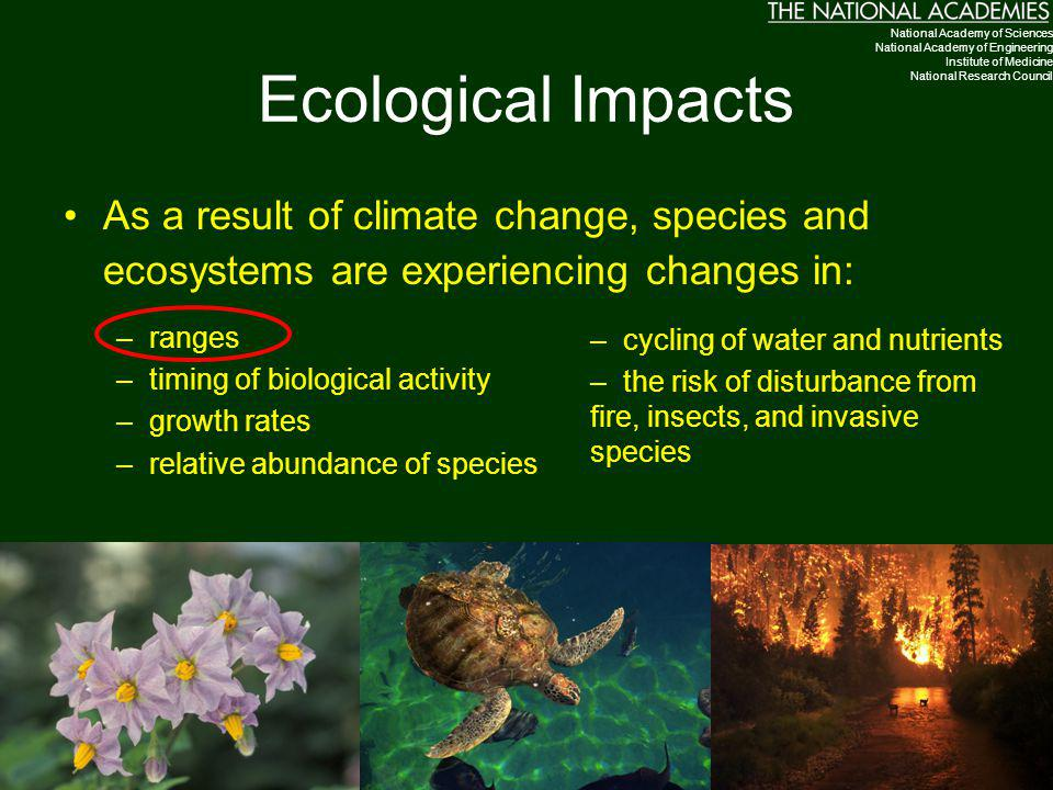 Ecological Impacts As a result of climate change, species and ecosystems are experiencing changes in: –ranges –timing of biological activity –growth r