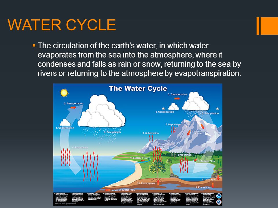 WATER CYCLE  The circulation of the earth's water, in which water evaporates from the sea into the atmosphere, where it condenses and falls as rain o