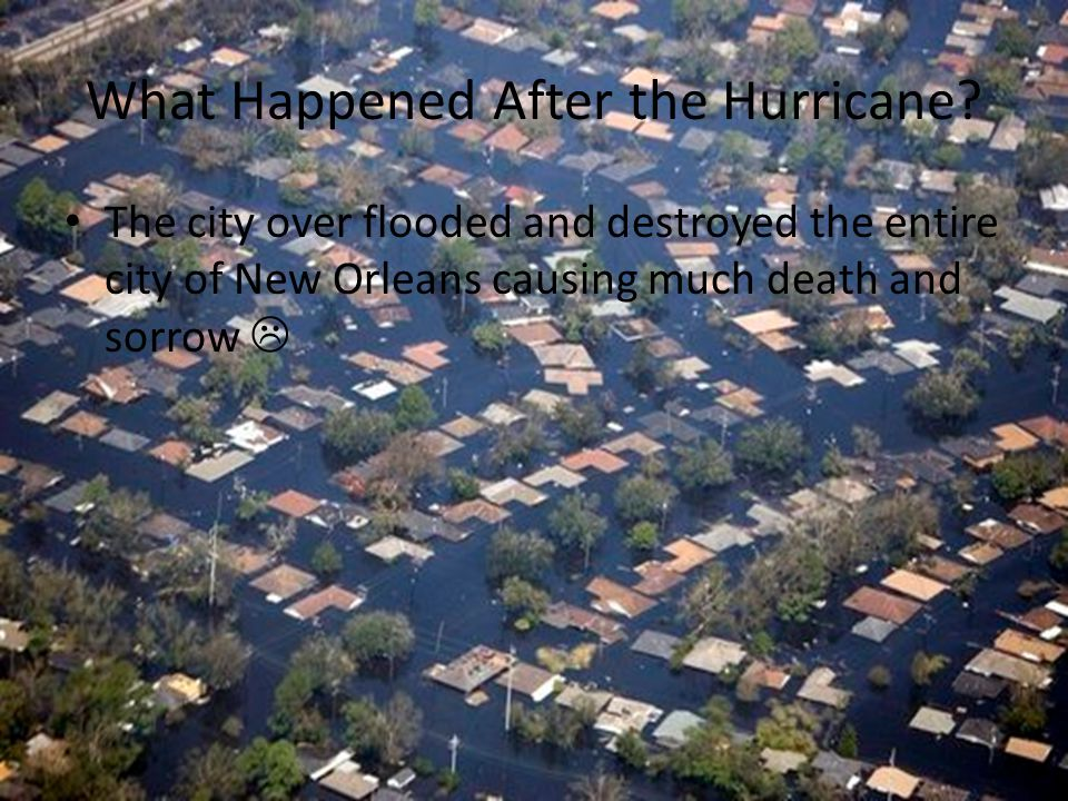 What Happened After the Hurricane.