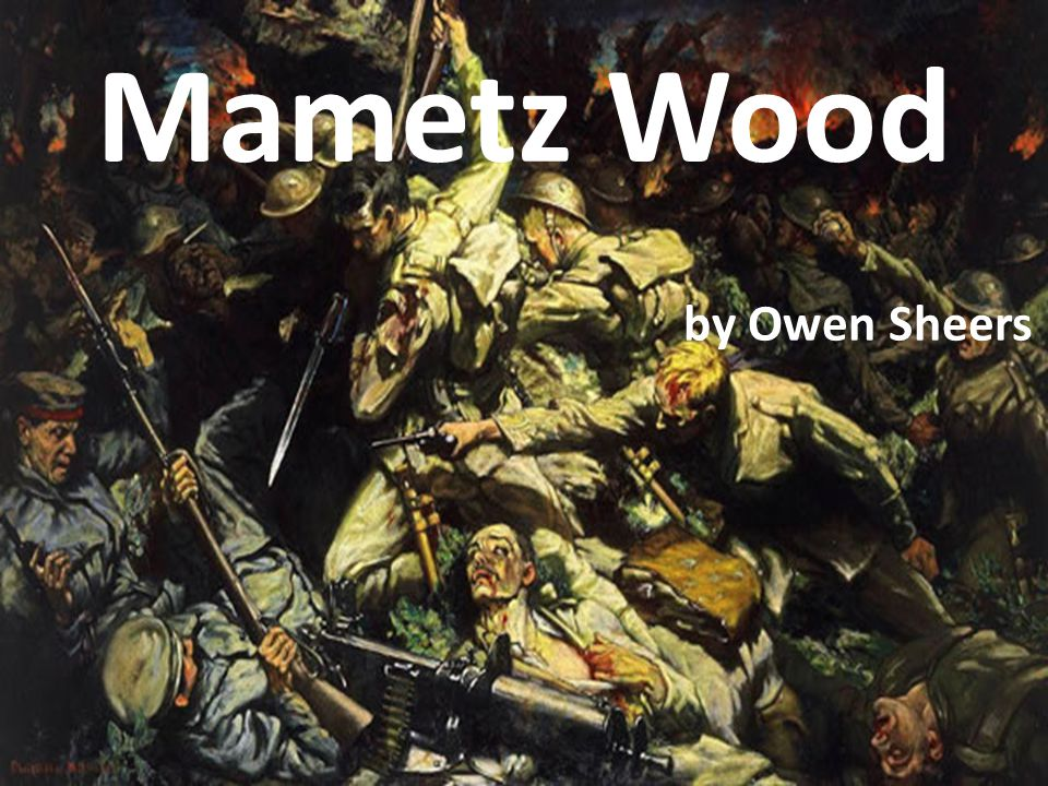 Today we are learning to … … analyse and interpret the poem Mamtez Wood by Owen Sheers