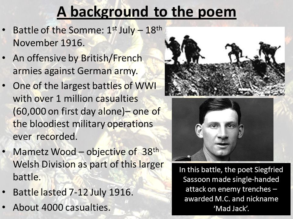 The battle raged for five days; Mametz Wood was devastated as artillery shells fell continuously.