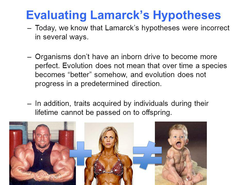 Evaluating Lamarck's Hypotheses –Today, we know that Lamarck's hypotheses were incorrect in several ways. –Organisms don't have an inborn drive to bec