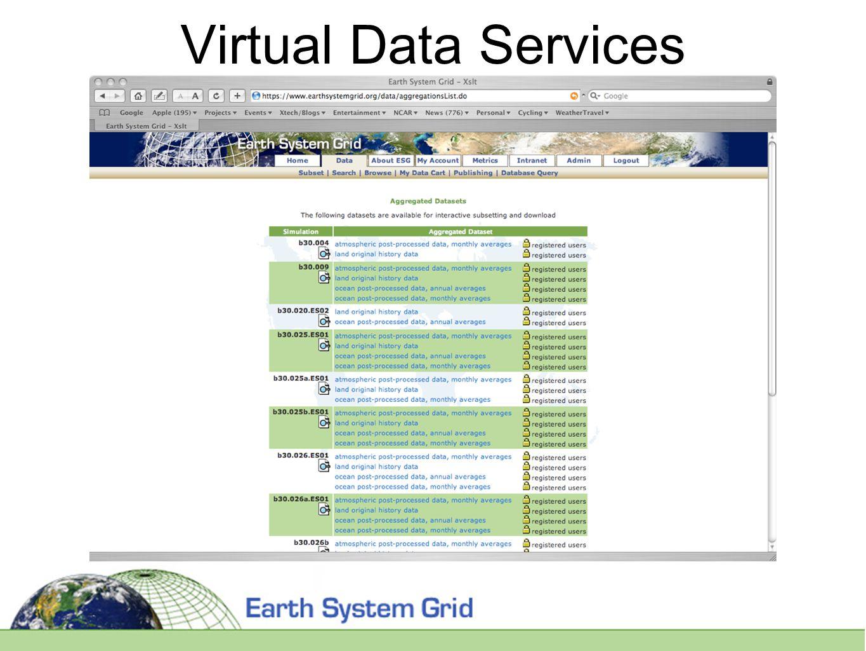 Virtual Data Services
