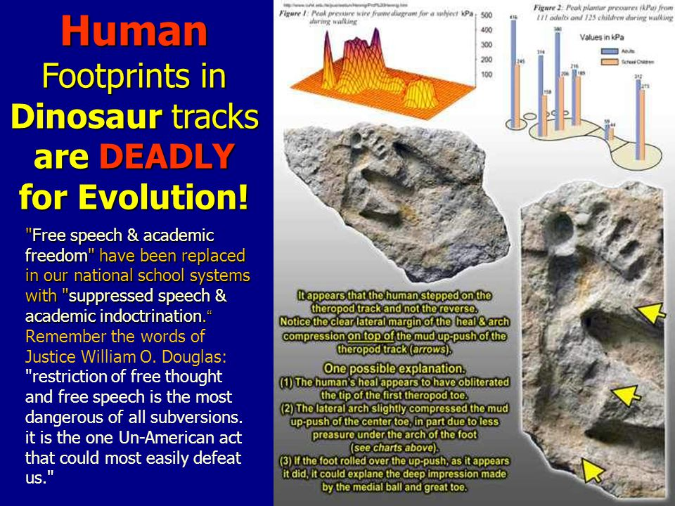 Human Footprints in Dinosaur tracks are DEADLY for Evolution.