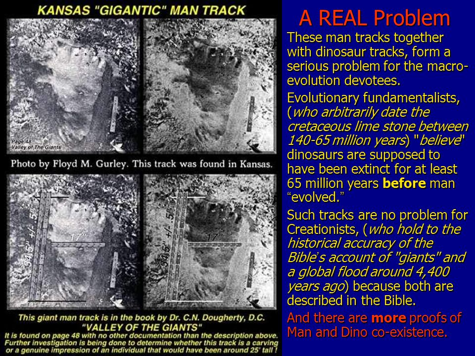 A REAL Problem These man tracks together with dinosaur tracks, form a serious problem for the macro- evolution devotees.