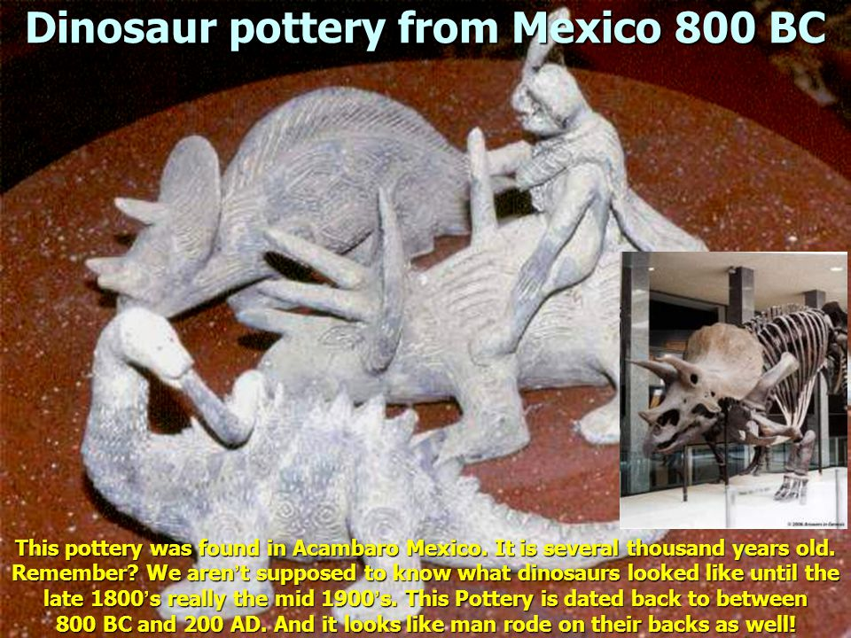 Dinosaur pottery from Mexico 800 BC This pottery was found in Acambaro Mexico.