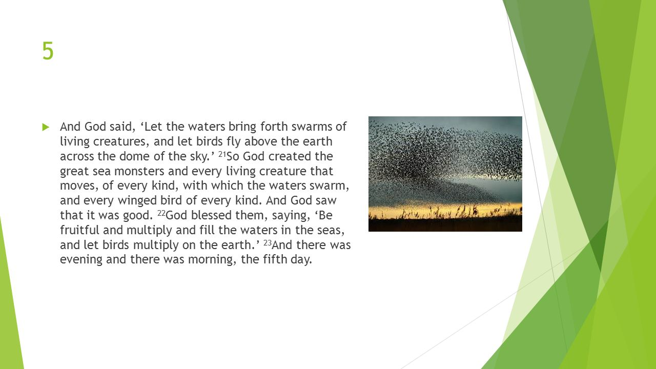5  And God said, 'Let the waters bring forth swarms of living creatures, and let birds fly above the earth across the dome of the sky.' 21 So God created the great sea monsters and every living creature that moves, of every kind, with which the waters swarm, and every winged bird of every kind.