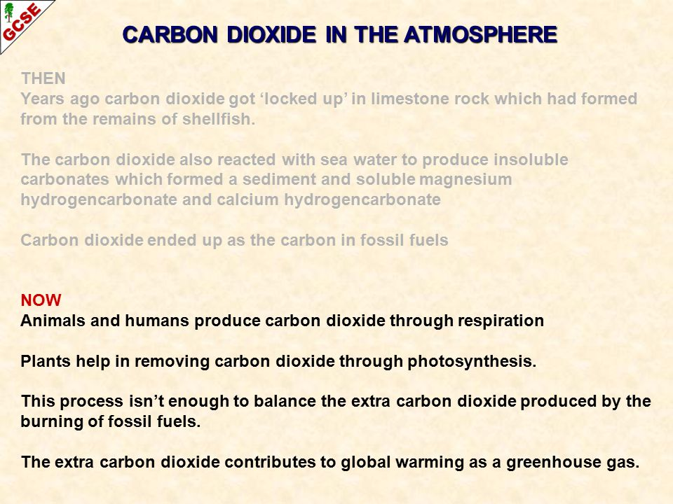THEN Years ago carbon dioxide got 'locked up' in limestone rock which had formed from the remains of shellfish. The carbon dioxide also reacted with s
