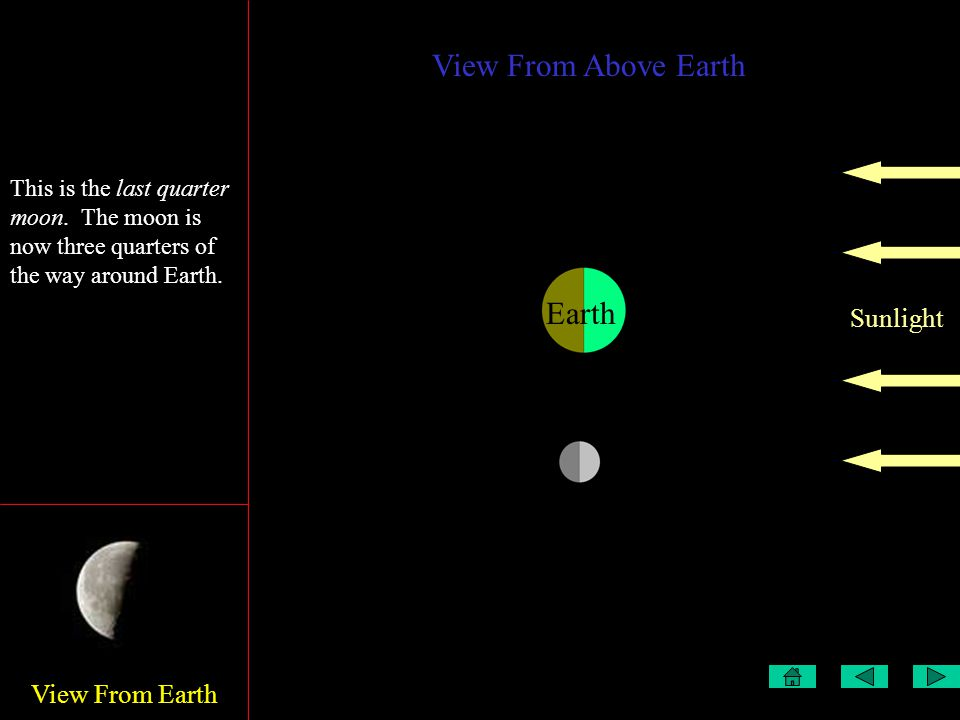 View From Earth View From Above Earth Sunlight Earth This is the first quarter This is the last quarter moon.