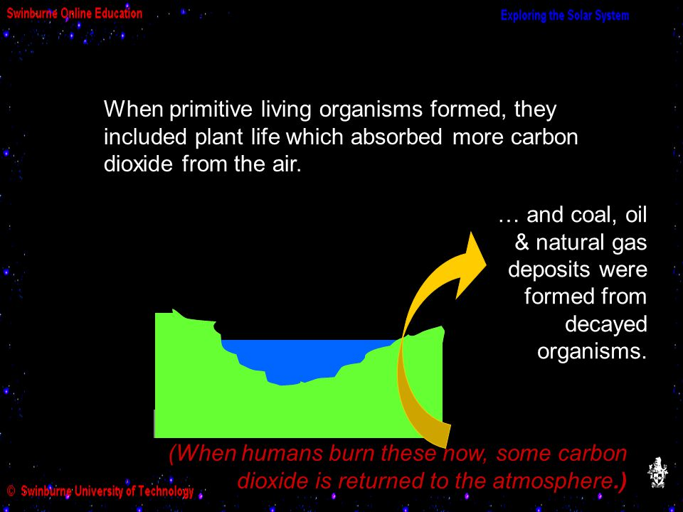 … and coal, oil & natural gas deposits were formed from decayed organisms. (When humans burn these now, some carbon dioxide is returned to the atmosph