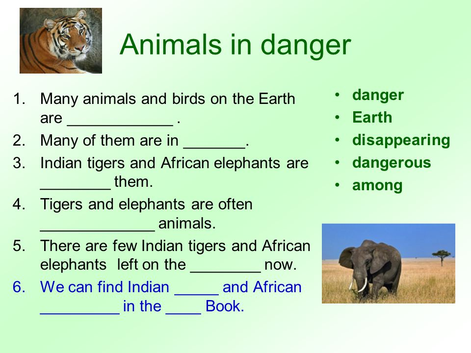 Animals in danger True or False.1.Many animals and birds are in danger.