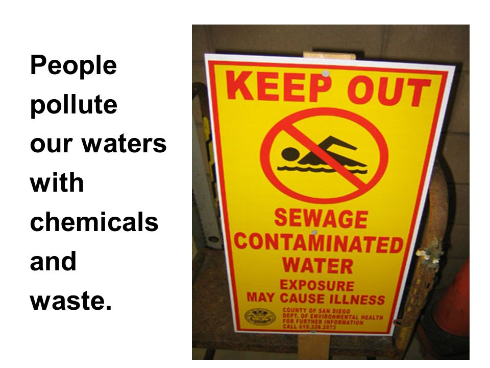 People pollute our waters with chemicals and waste.