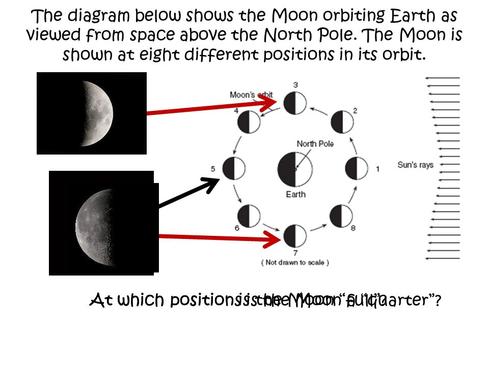 The diagram below shows the Moon orbiting Earth as viewed from space above the North Pole. The Moon is shown at eight different positions in its orbit