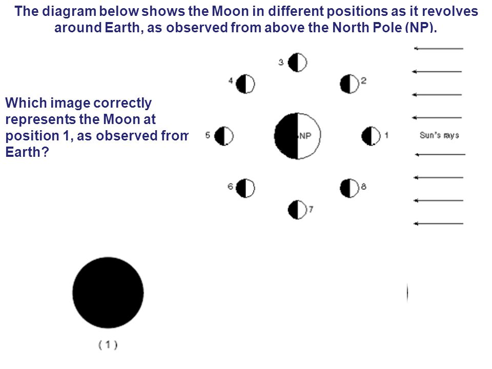 The diagram below shows the Moon in different positions as it revolves around Earth, as observed from above the North Pole (NP). Which image correctly